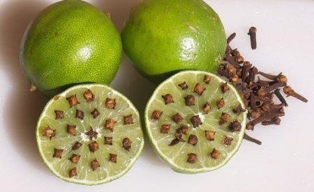 Zanzare 5 rimedi naturali per eliminarle definitivamente